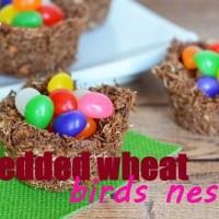 Shredded Wheat Birds Nests