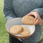 vegan and gluten free peanut cookies