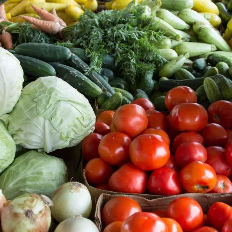 pile of assorted varieties of vegetables