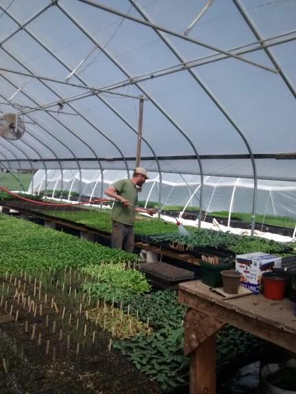 Farmer Chuck cultivating organic crops