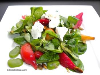Roasted Beet, Fava Bean & Goat Cheese Salad
