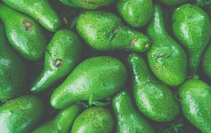 Avocado, the healthy fruit with a dangerous impact on our environment. Should you stop eating it right away?