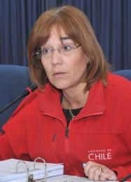 Intendenta deTarapacá aclaró que ella es la que habla por el Gobierno en la Región
