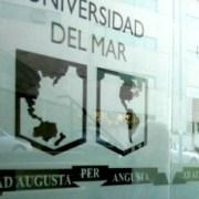 Ex profesor de la U. del Mar encabezó auditoría académica del Mineduc