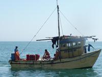 Subpesca anuncia la existencia de 8 mil seguros de vida para pescadores artesanales