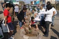 Iquiqueños arborizan barrios con CONAF y MINVU