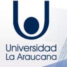 Cuánto cuesta abrir una universidad privada en Chile: el caso de La Araucana, la última que entró al sistema