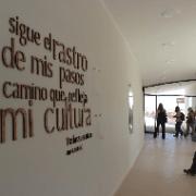 Gremio del turismo evalúa proyectos en reserva  pampa del tamarugal