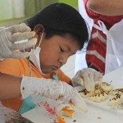 Fomentan tradicional telar andino, flores de papel  y dulces típicos, en niños de Pozo Almonte