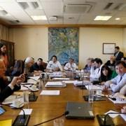 Reforma constitucional sobre elección de intendentes quedó lista  para ser votada por la Sala de la Cámara de Diputados