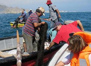 Pescadores y buzos participan en Programa de Desarrollo Tecnológico implementado por CORFO
