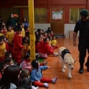 Unidad Canina de Gendarmería se presentó en jardín infantil, mostrando a párvulos cualidades de ejemplares amaestrados