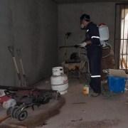 Más de 800 viviendas intervenidas por Programa de Control de Plagas de Seremi de Salud