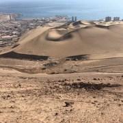 Que se detengan trabajos en el Santuario de la Naturaleza Cerro Dragón, solicita Consejo de Monumentos Nacionales a Obras Públicas