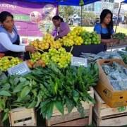 Mercado Campesino: mermeladas, frutas, quínoa y hierbas medicinales llegan desde el mundo rural