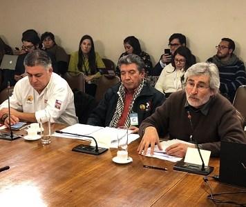 Comisión de Constitución que preside diputado Gutiérrez, acordó poner en tabla proyecto que permite expropiar Soquimich