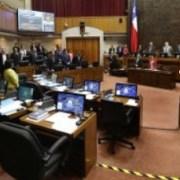 Cámara Alta rinde minuto de silencio en memoria de comunero mapuche, Camilo Catrillanca