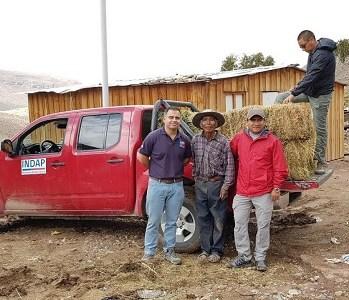 Alimento para animales y víveres, reciben agricultores de localidad de Chusmiza en la comuna de Huara