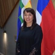 Enfrentamiento público entre altos investigadores y ex investigadores del INTE-UNAP, en contexto de candidatura a rectora de Marcela Tapia