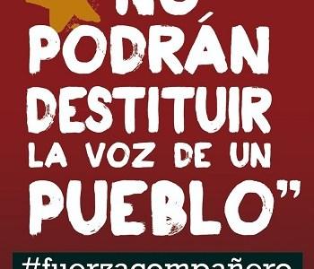Suman apoyos al Diputado Gutierrez. Colectivo no reconoce legitimidad legal ni autoridad moral al TC