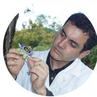 João Beles-naturopatia-medicina-alternativa-plantas