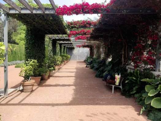 Analizando-jardines-edificativa05