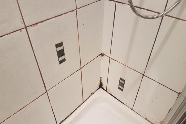 Shower Grout Before Restoration in Edinburgh