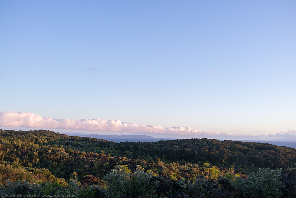 TiriDawn_DSF3277-Edit6x4WEB