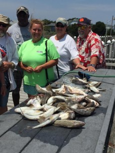 Today's catch from an Edisto Island charter fishing trip