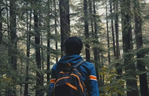 Boy from Stranger Things in ET woods