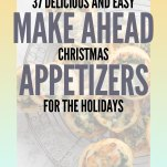 37 Delicious and Easy Make-Ahead Christmas Appetizers Pinterest Pin