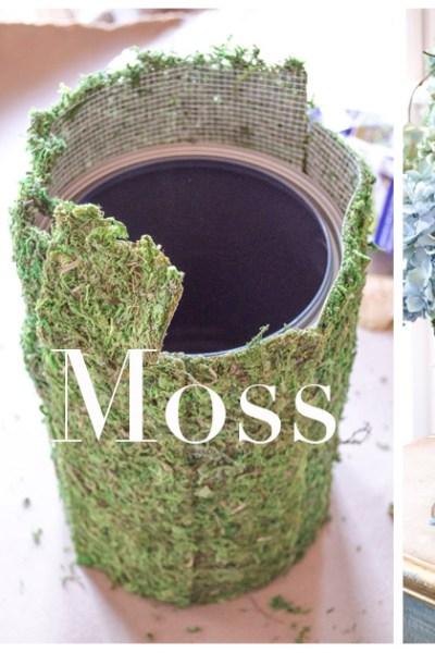 Easy Moss Planter