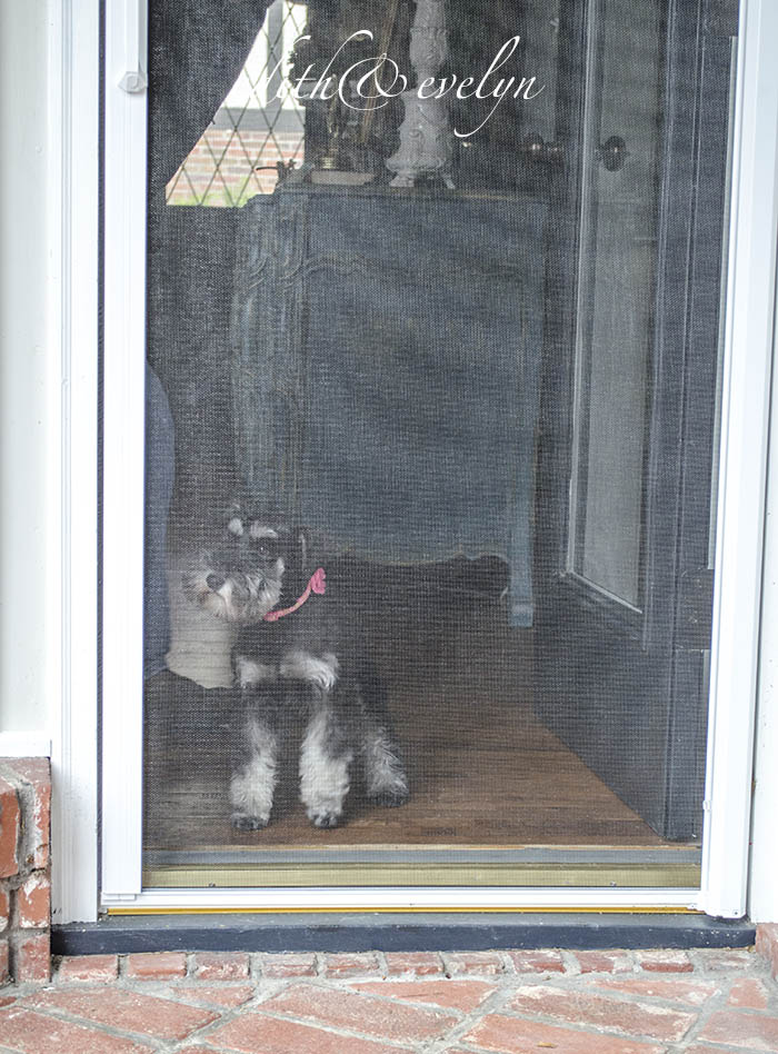 A Retractable Screen Door   Edith & Evelyn   www.edithandevelynvintage.com