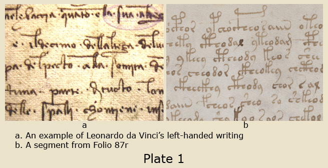 Leonardo Da Vinci Introduction Essay Term Paper Academic Service