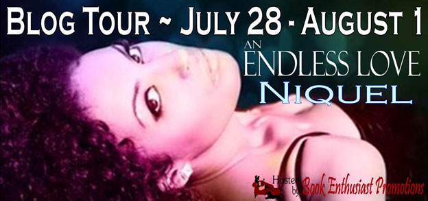 Endless Love by Niquel Blog Tour