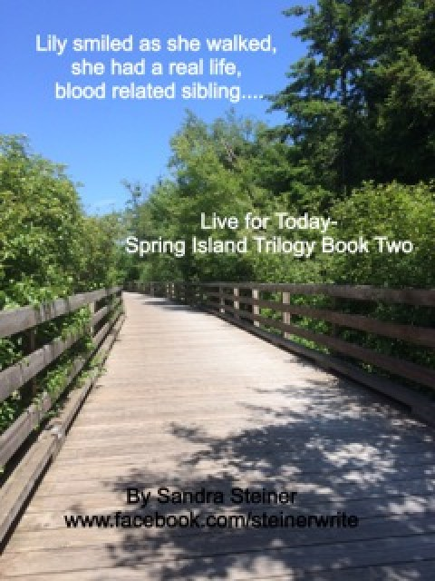 Live for Today by Sandra Steiner teaser