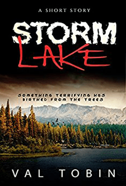 Storm lake by Val Tobin.