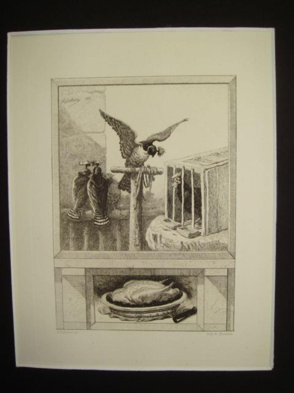 Le Faucon Et Le Chapon : faucon, chapon, Fontaine,, Fables,, Faucon, Chapon., Gravure, Originale, L'Eau, Forte, Papier