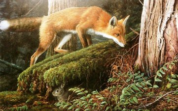 renard et lapin