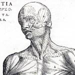 Curieuse histoire de la médecine