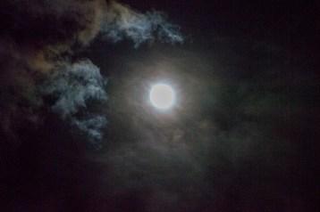 Full moon Dec 2016