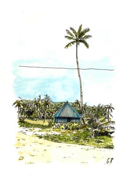 Gaelle Privat illustratrice L'Herbier de Sabine Sicaud editions des Veliplanchistes