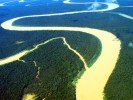 Medo de intervenção na Amazônia é 'paranoia', dizem americanos