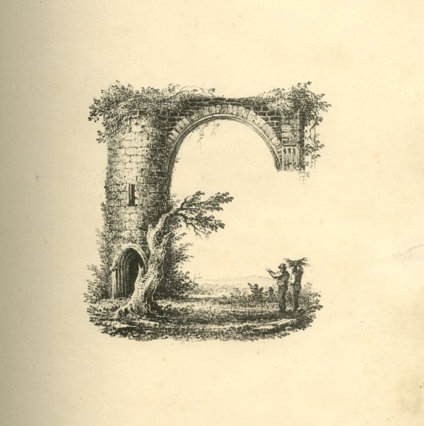 A Beautiful 19th Century Font Inspired By Nature