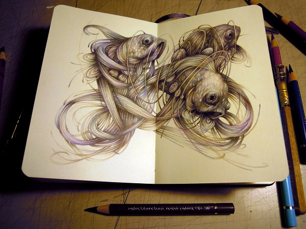 Amazing Illustrations Of Animals That Seem To Pop Up From Sketchbooks  DesignTAXIcom