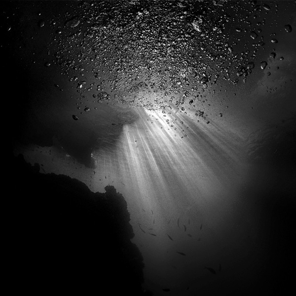 Stunning Black Wallpapers Dark Brooding Underwater Photography Like You Ve Never
