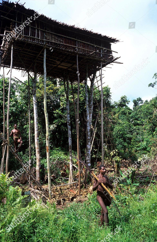 Handuops Smaller Tree House One Two Clan Foto Editorial En Stock Imagen En Stock Shutterstock