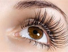 2e3b6f2fcf3 HOW TO GROW LONG THICK EYELASHES & EYEBROWS NATURALLY IN JUST 3 DAYS