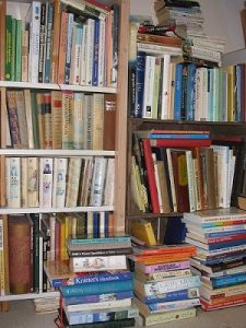 photo of books on bookshelves for post options for publishing your book