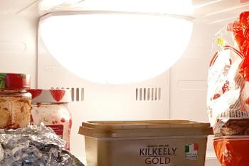Samsung fridge interior lamp